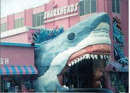 C:\Users\shaun\Documents\memory stick\New folder\New America\web America photos 1\Jaws -eat your heart out in Alabama!.jpg